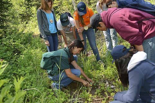 سفر آموزشی درس آشنایی با حشرات و پروانه ها